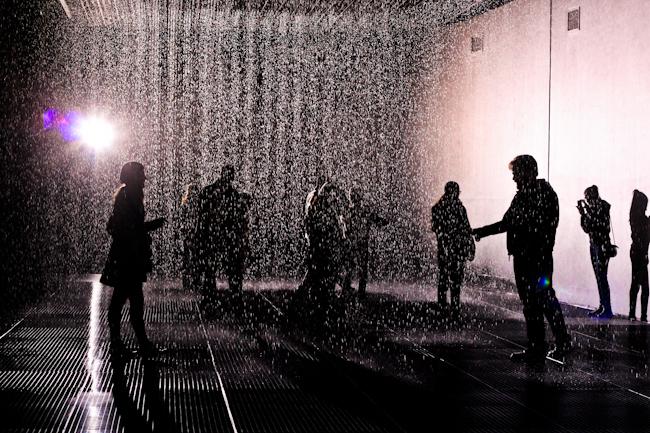 Rain Room, Fika & Semlor
