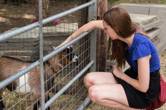 Mudchute city farm & så djur förstås